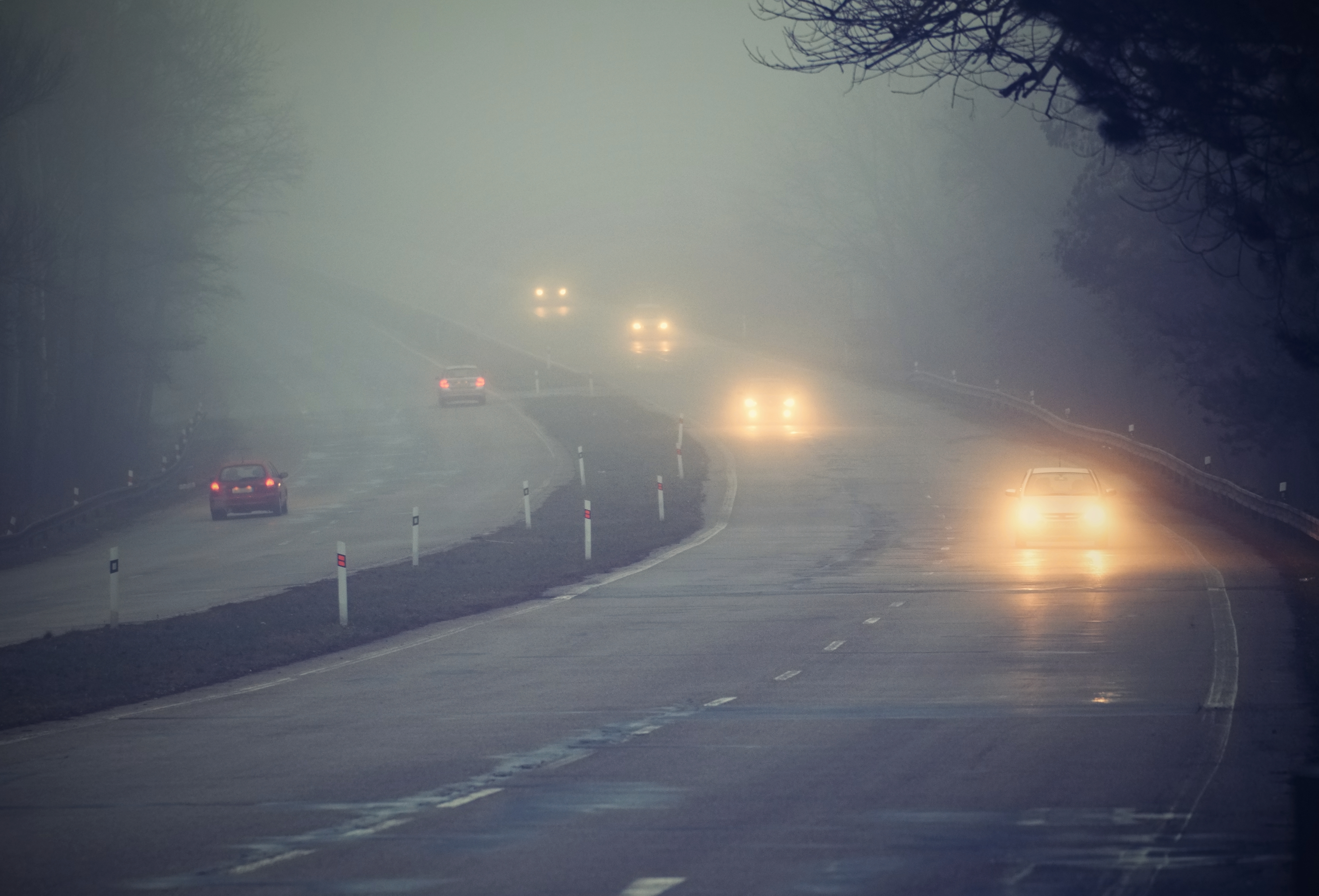Foggy Roads: How To Navigate Danger Zones