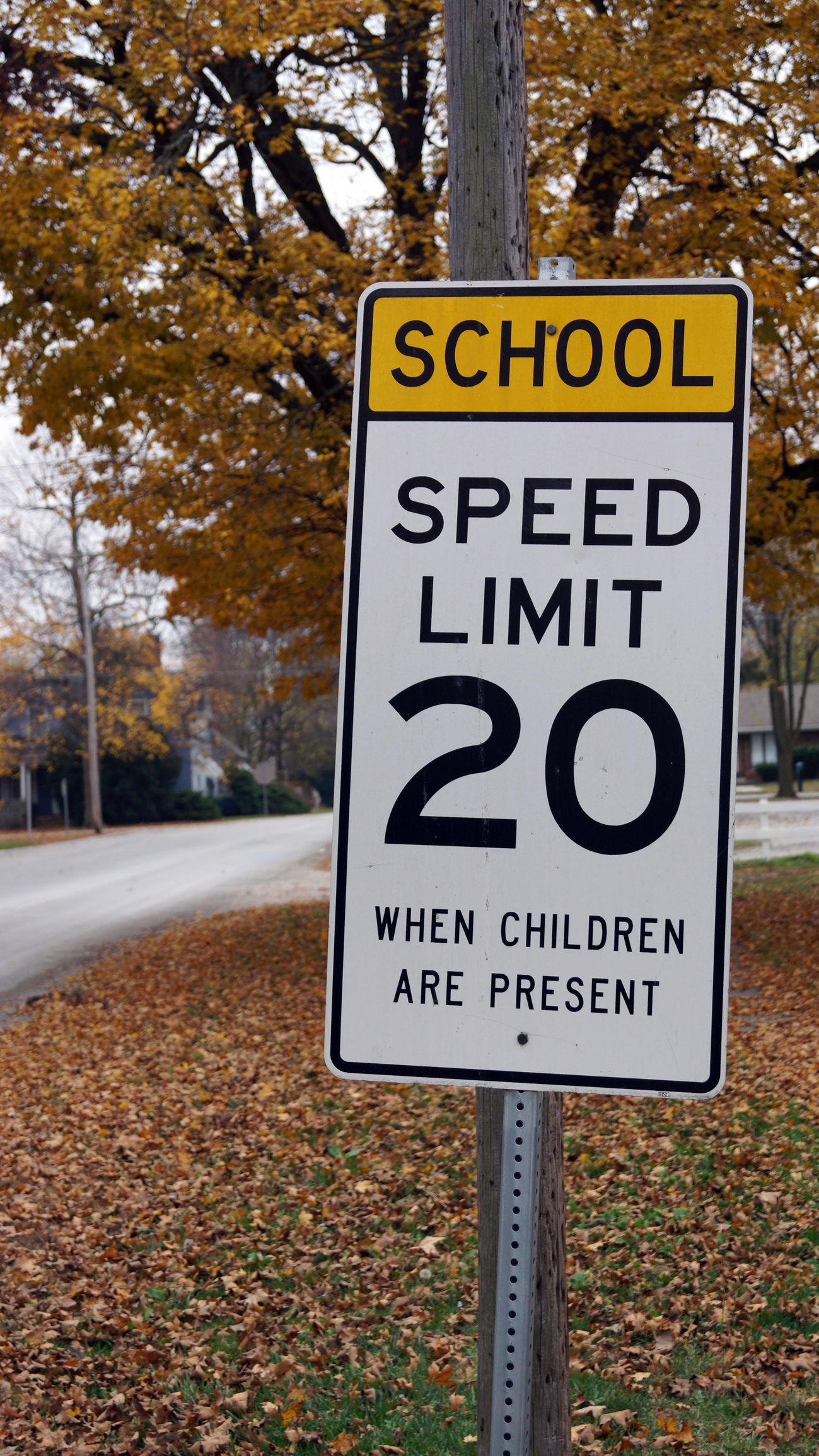 Lifesaving Tips for Traveling Through School Zones