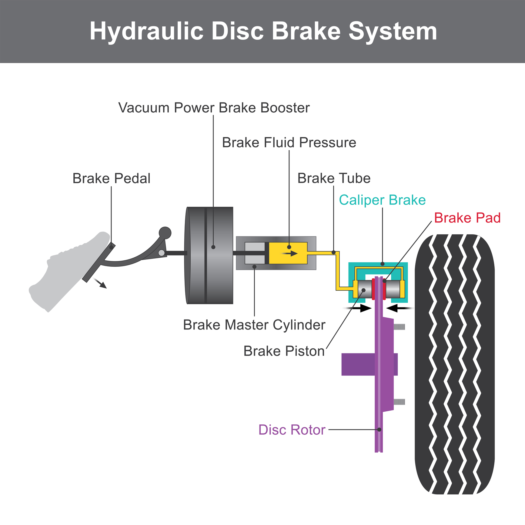 Anatomy Of Your Brakes