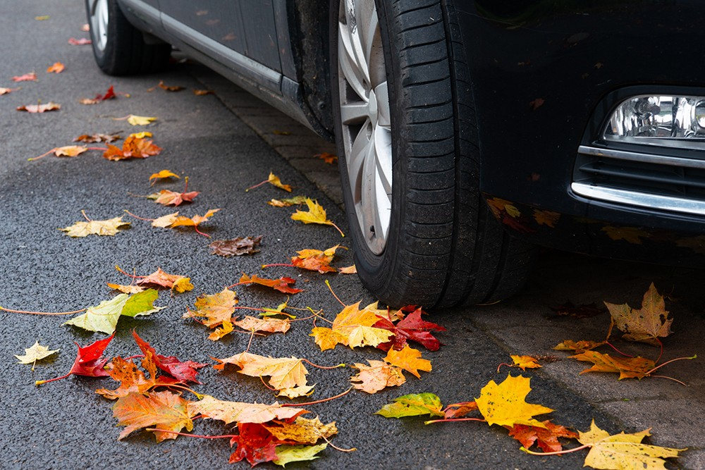 Tire Tips: Making The Wise Choice For Autumn Driving